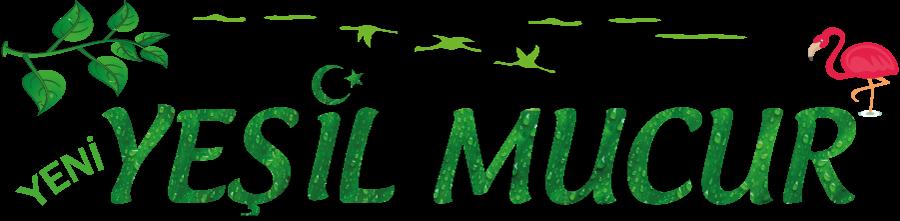 Yeni Yeşil Mucur Gazetesi -