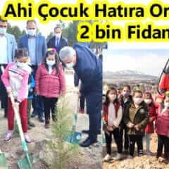 2 Bin Fidan Toprakla BuluÅŸturuldu